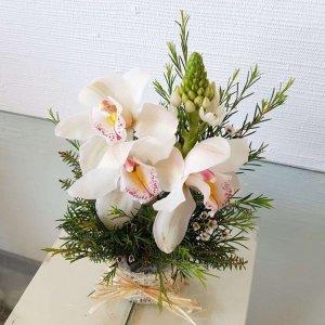 Centro De Orquídeas Branca E Beijinhos De Mãe