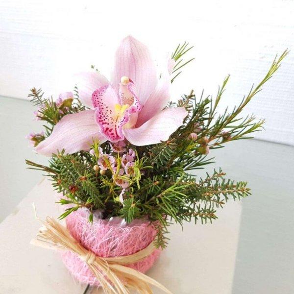 Vaso Com Orquídea Rosa E Verduras