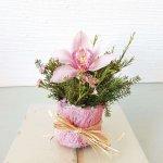 Vaso Com Orquídea Rosa