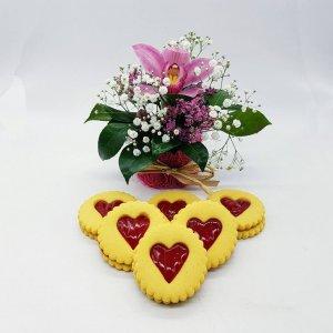 Orquidea Dia Da Mulher Flores