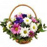 Cesto De Flores Com Margaridas