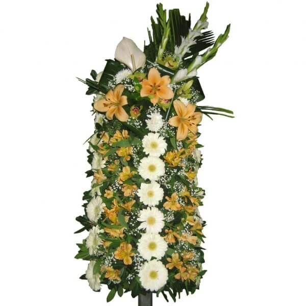 Palma De Funeral 1