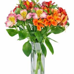 Bouquet Astromelia 2