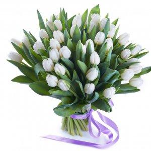 Bouquet De Tulipas Brancas